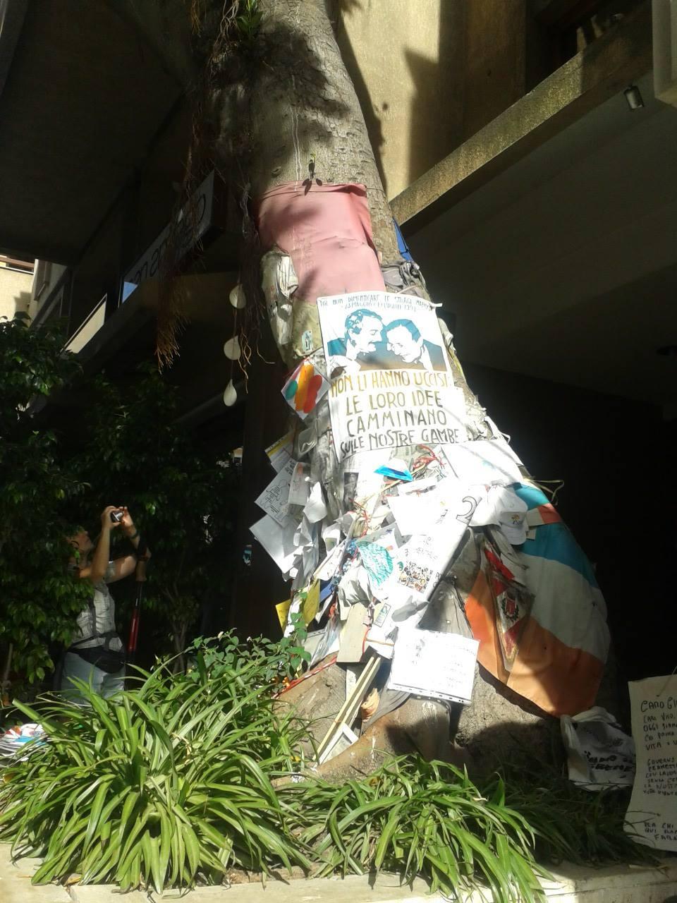 albero di falcone e borsellino