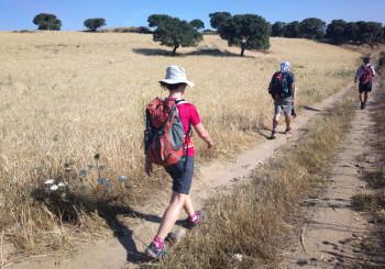 Diario del cammino#4 da Sorgono a Gavoi