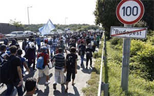 migranti_-_ungheria_-agosto_2015-50